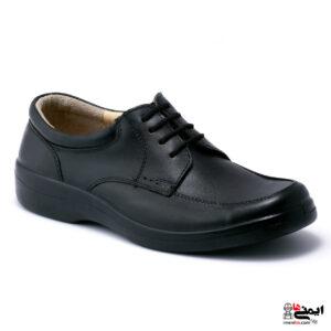 کفش کار پرسنلی